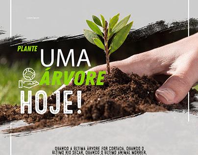 Flyer Plante uma árvore!