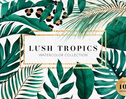 Lush tropics
