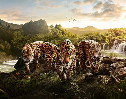 "Meaning of Automotive brands ""Jaguar"""