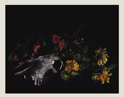 Espacio | Objeto | Retrato