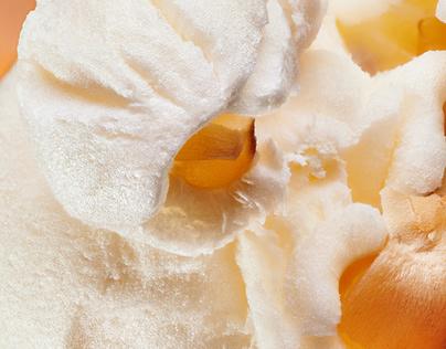 Popcorn - Macro Photography