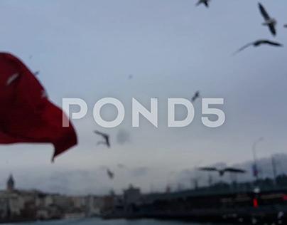 Istanbul Eminonu seagull and Turkish flag