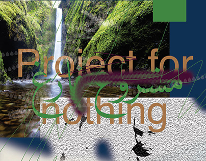 Project for nothing