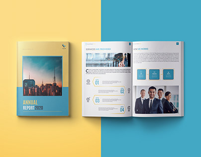 """BUSINESS ANNUAL REPORT - """" FALCONFLY """""""