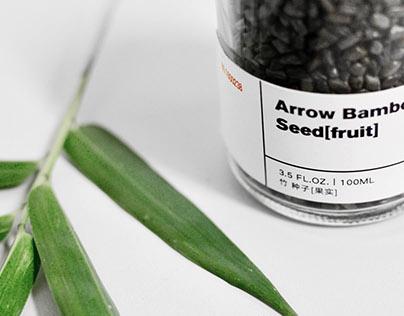 Concept Brand Design | Arboreal Laboratory 树零实验室