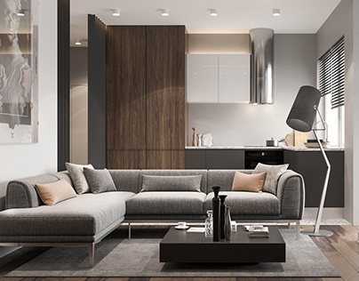 Stylish flat for single man 52,8 sq.m