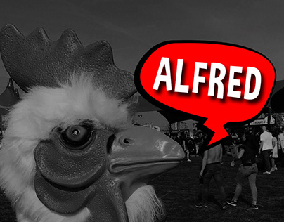 ALFRED THE ROOSTER / ICON + BUSINESSCARD