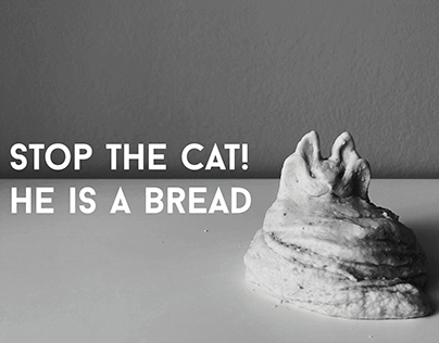 Stop the cat! He is a bread - stop motion