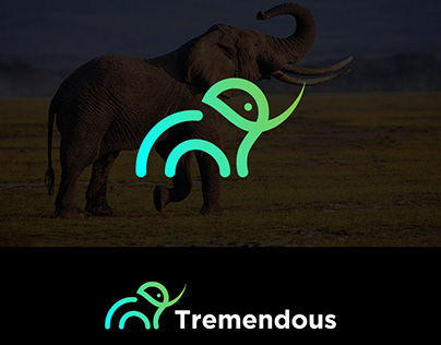 Elephant Modern Minimalist Logo
