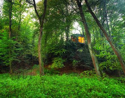 Tree house. Kobylec - Kozi Stok. Poland