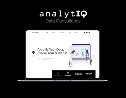 Consultancy - AnalytIQ