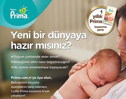 Prima Poster Design