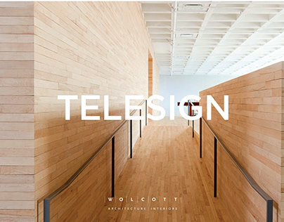 Telesign Presentation for WAI