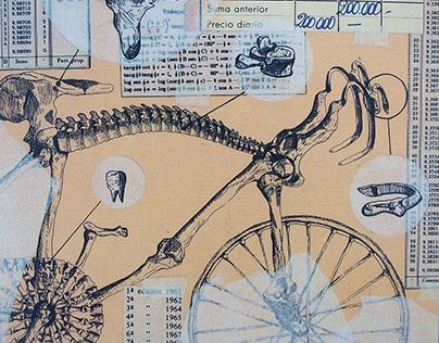 Técnicas - Bicicleta
