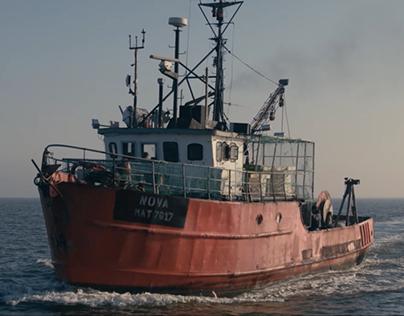 Pescanova/ The Shrimp Ring / Film
