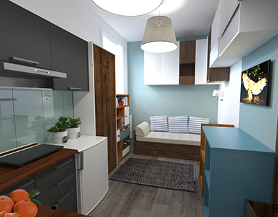 Small, low budget, one person studio apartment