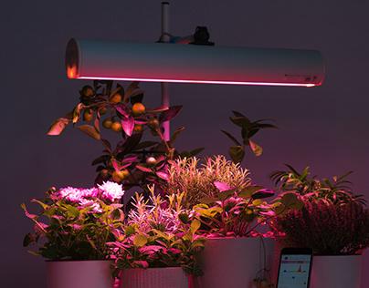 Aurora smart phyto luminaire