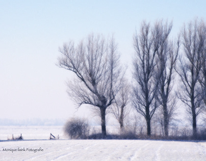Linschoten winter, visual poetry