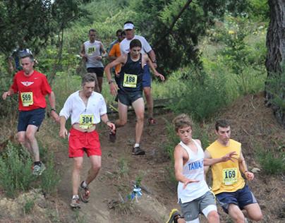 The Dipsea Race