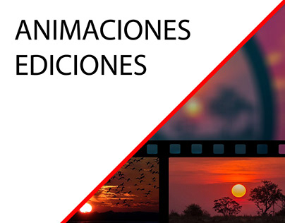 Animación y Edición