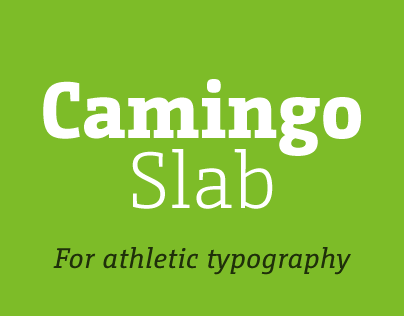 CamingoSlab Type Family