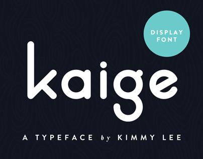KAIGE™ | Typeface