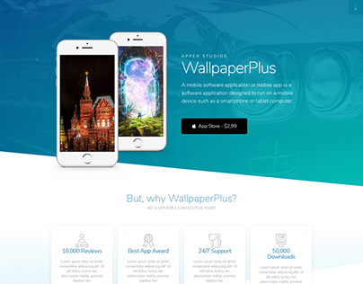 I will build and design your WordPress website.