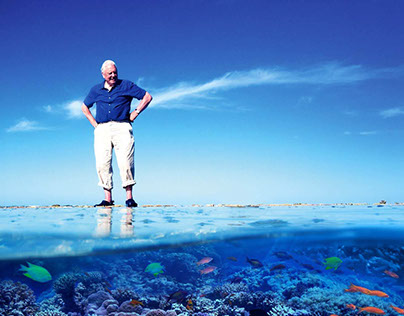 David Attenborough's 'Great Barrier Reef'