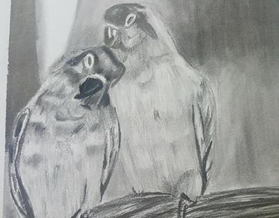 lovebirds on graphite pencil