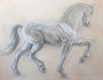 Silverpoint horse A3