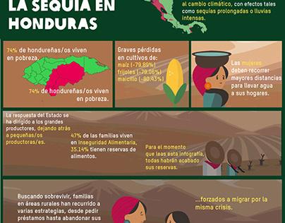 Infográfico CSC y sus efectos en Honduras - OXFAM