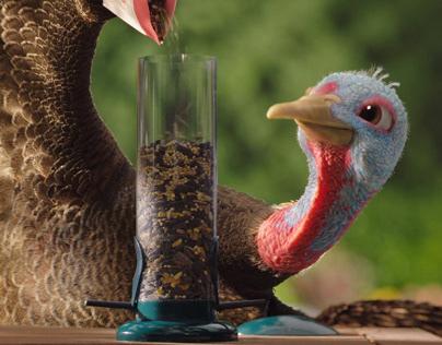 "Chantix ""Slow Turkey"""