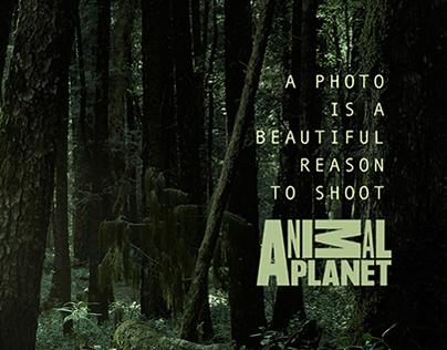 -Shoot / Animal Planet