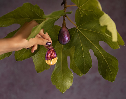 Fig dipped in gold chocolate