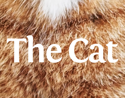 The Cat magazine