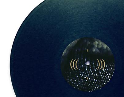 WITXES LP