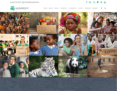 Projects Full-Width Page - Nonprofit WordPress Theme