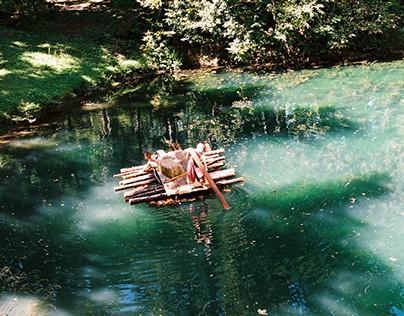 Floating forrest