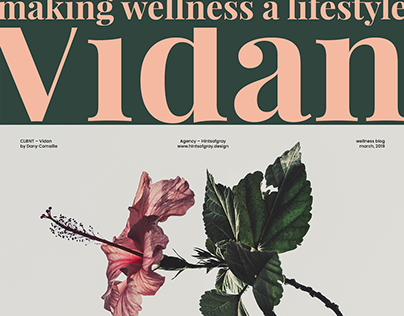 vidan – making wellness a lifestyle
