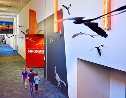Dinosaur Gallery — Wayfinding Graphics