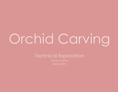 Orchid Carving Exploration