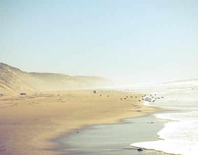 Shore Photography
