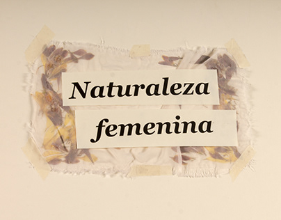 Naturaleza femenina, manual de arte