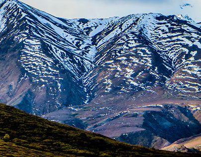 Alpine Denali #1