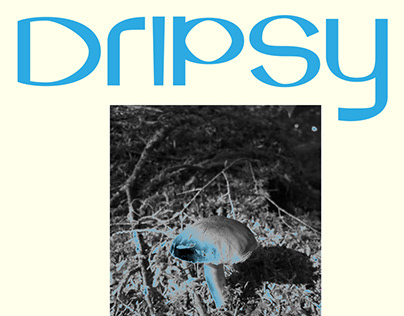 Dripsy