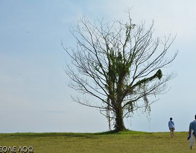 Punggol Tree