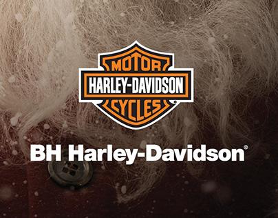 BH Harley-Davidson | Peças On e Off