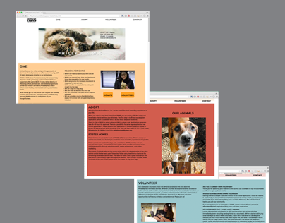 PAWS website redesign