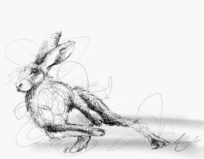 Hare, scribble I