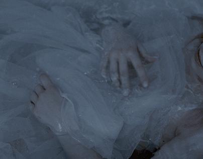 The sleeper ( Tale of a tub )